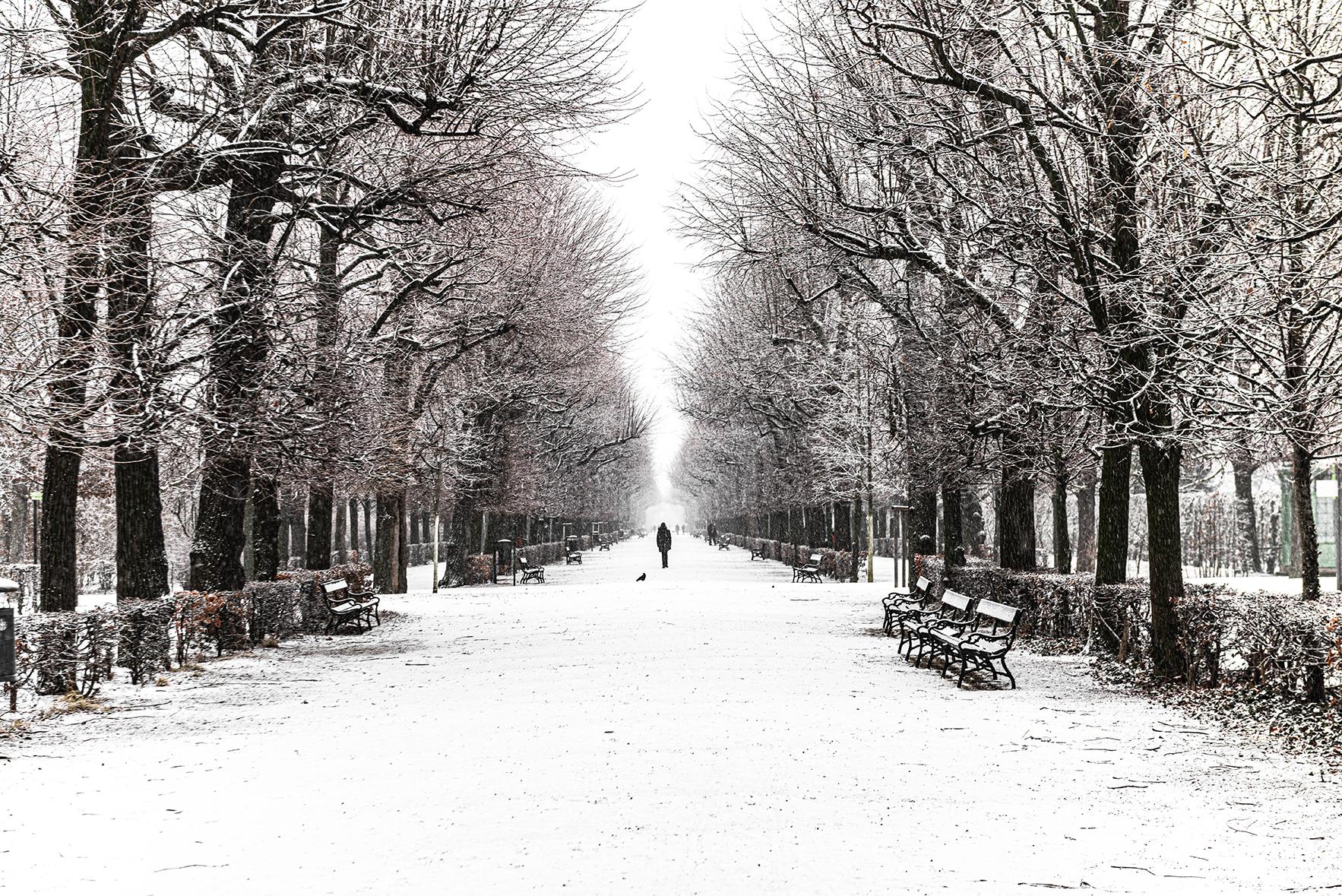 Schönbrunn con la neve